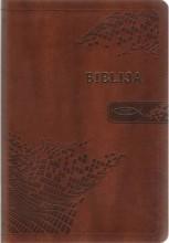Biblija. Kanoninė